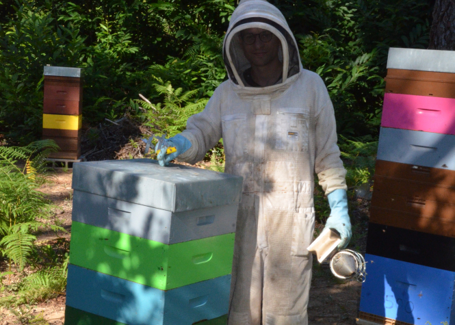 Honey producer Benoit Serre with his bee hives in France. Photo by Jane Hanks.