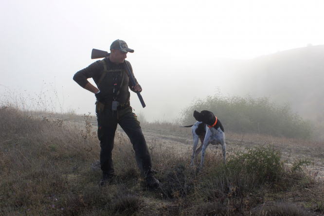 A man with a gun and a dog preparing to hunt. In France, it is legal to hunt 90 species of animal.