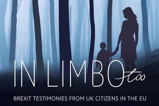 in limbo too brexit testimonies book