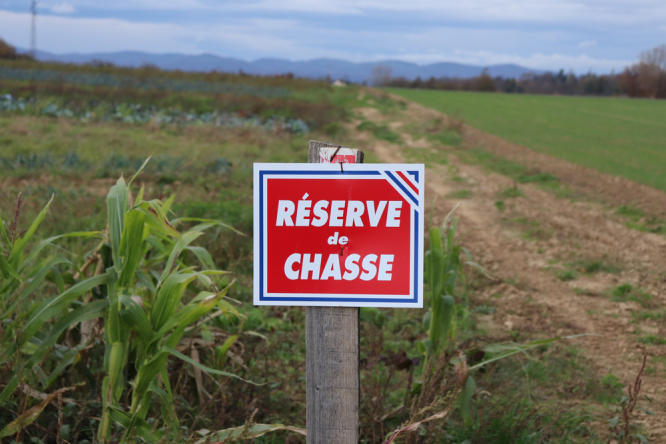 """Sign """"hunting reserve"""" on a background of greenery, town of Corbas, Rhône department, France. Hunting: Thousands march in France to defend 'rural way of life'"""