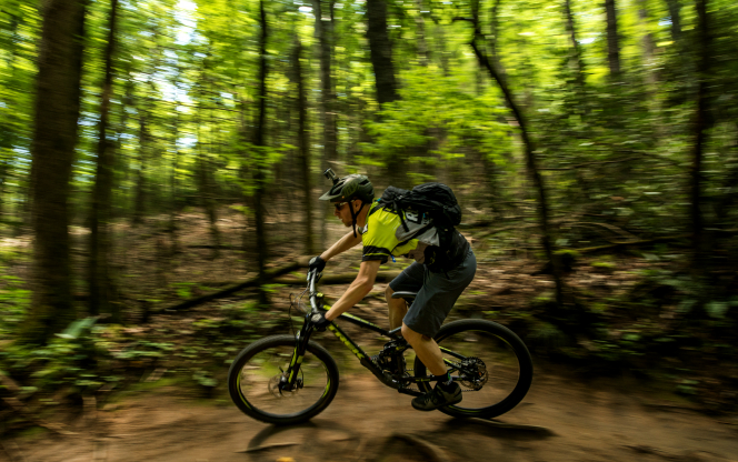 A man riding a mountain bike in forest. Traps on French forest paths endanger bikers and walkers