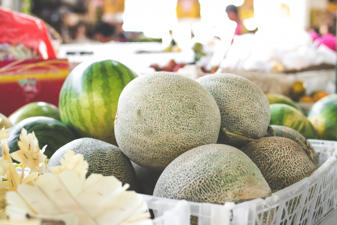 Melons in a basket. Virus for melon, cucumber, courgette plants found in France