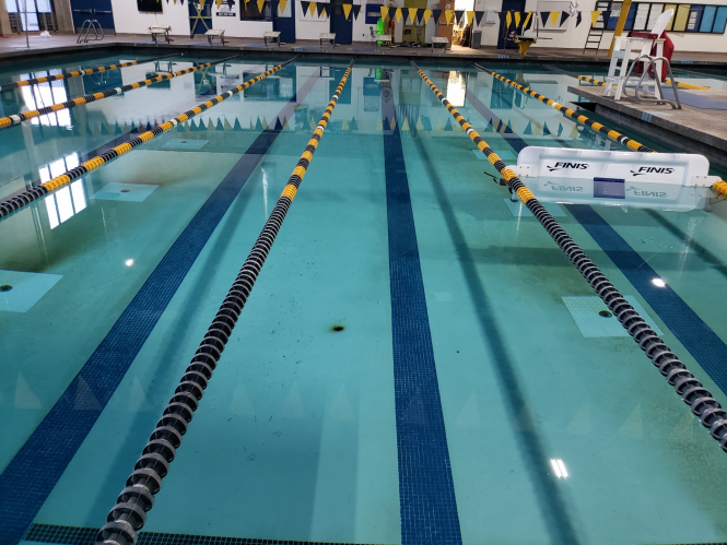 Swimming pool lanes. 20 public pools in France are set to reopen with new sanitary measures.