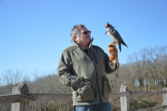 Meet The French Man Who Saved The Peregrine Falcon
