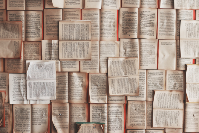 September book reviews. Photo: open books cover a table. By Patrick Tomasso / Unsplash