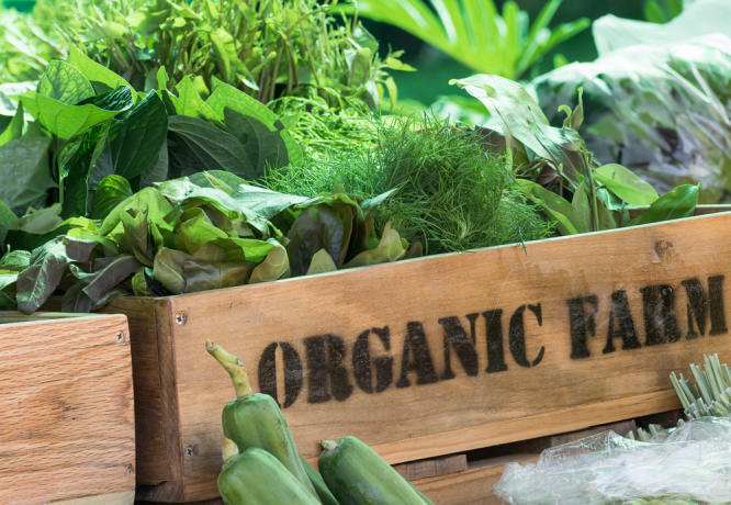 A crate of organic food. Organic food in France not always 'better quality' study finds