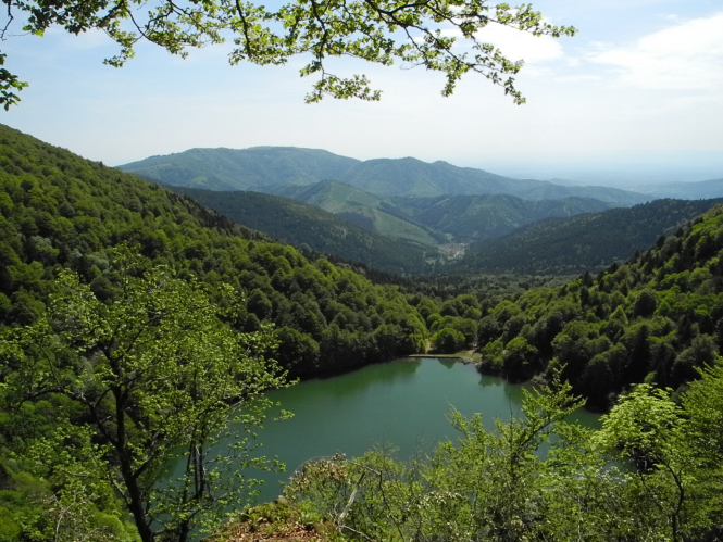 The Vosges mountains are a popular holiday destination and now, visitors can get cash vouchers for going on holiday there.