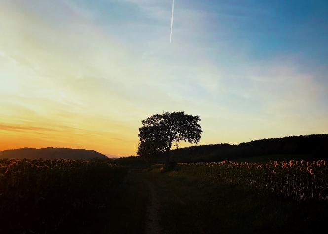 Sunset over Auvergne-Rhône-Alpes, France. Article: This month, we explore department 07 of France: Ardèche. Photo by Bertrand Soulier / Unsplash