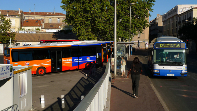 buses in Montpellier
