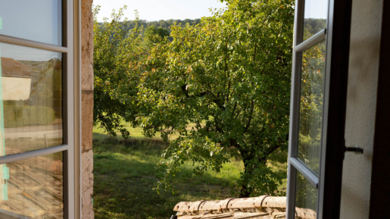 Orchard at French property