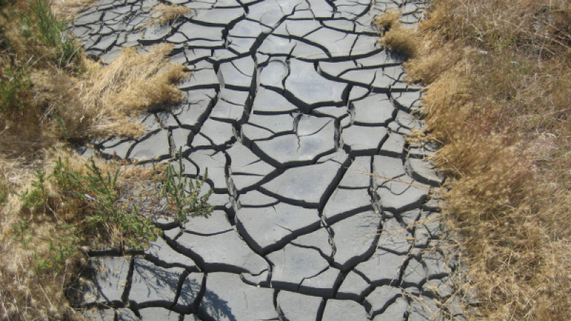 secheresse drought generic