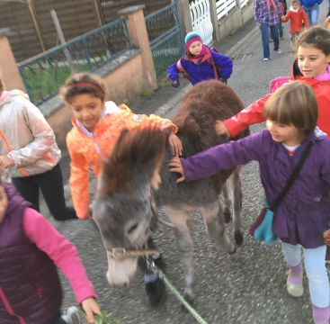 Children pat donkey as they walk along road