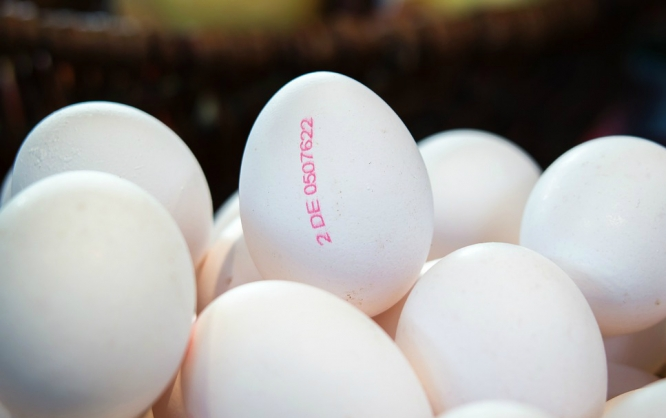 Hens&#039 eggs are all stamped with information on their origin