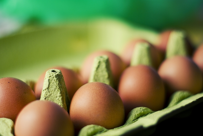 Some Egg Products Contaminated with Insecticide Found in Austria