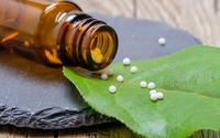 French GPs call for stop to homeopathy reimbursement