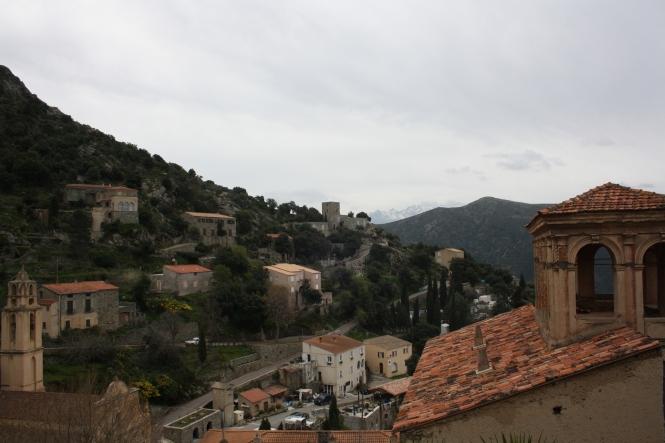 Lama, Corse