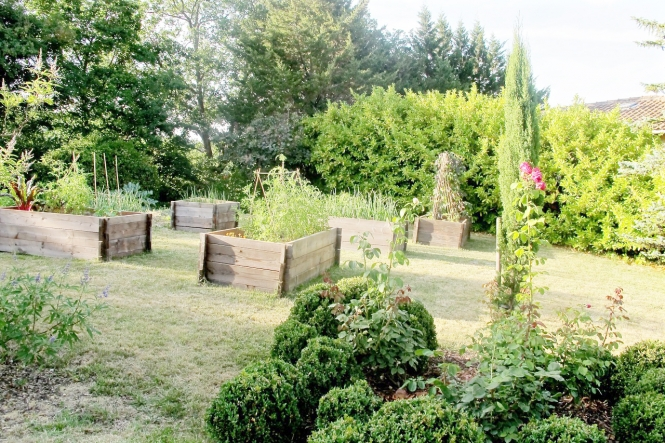 June Williamson new vegetable garden