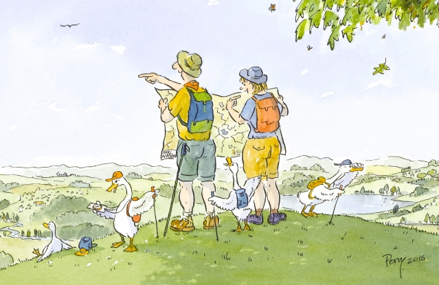 Cartoon of two hikers on a hill with maps - and ducks