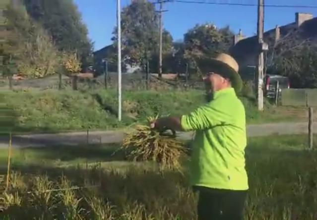 Man in hat shows off crop harvest