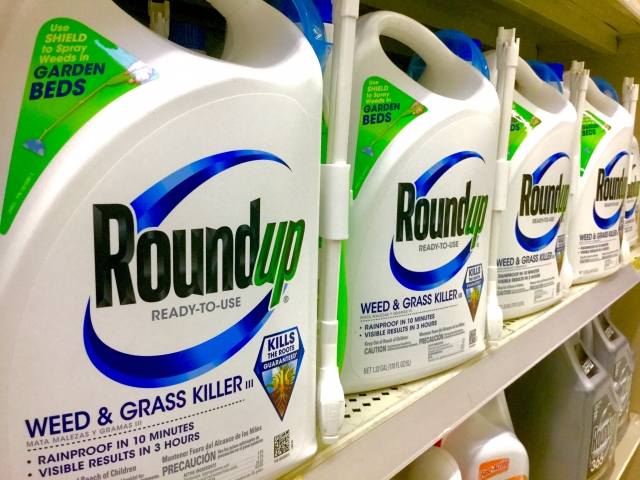 White plastic bottles with Roundup labels