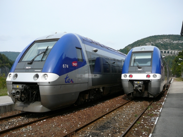 Two blue trains side by side on tracks with viaduct behind