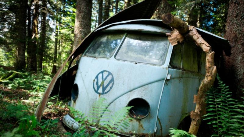 Old blue VW campervan in wood