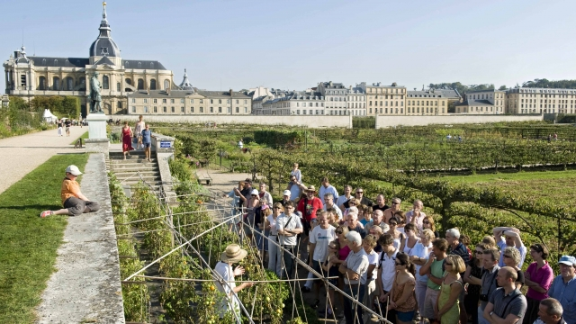 Crowds of visitors at the Potager du Roi in the gardens of the Palace of Versaille