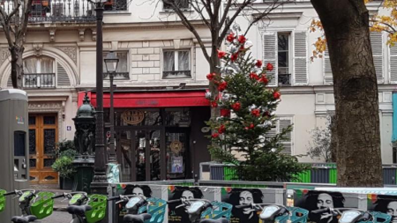 Smovengo velib bikes at a station in Paris