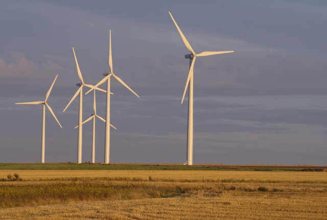 A group of wind turbines in an arable field